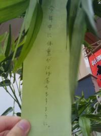 2010y07m04d_005837927