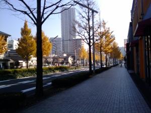 20101201_100742_r